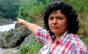 bertacaceres'point