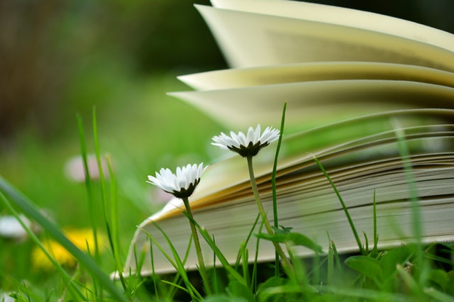 6 Books that helped my Business Journey