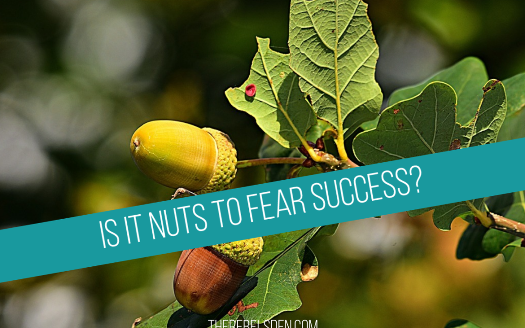 Is It Nuts To Fear Success?