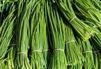 Chives - TheRecipe.Website