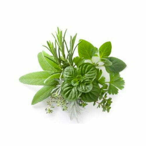 Herbs de Provence - TheRecipe.Website