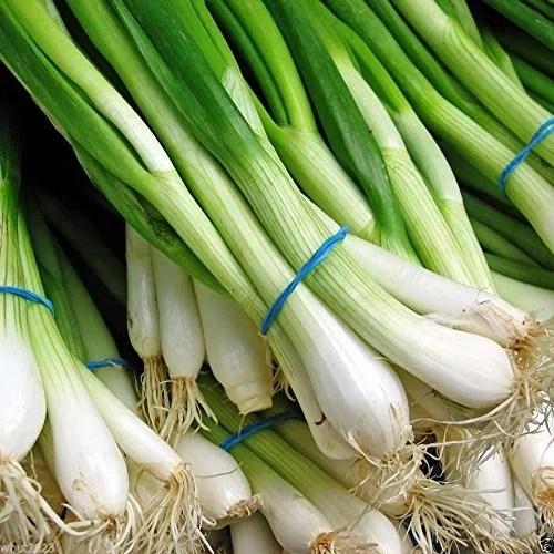 Scallion/Spring Onions - TheRecipe.Website