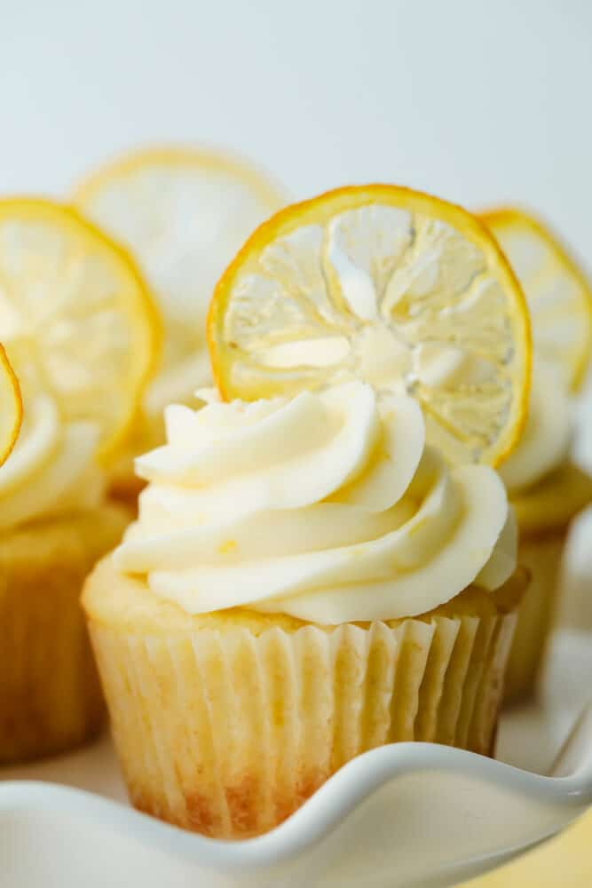 A lemon cupcake decorated with a dried candied lemon slice.