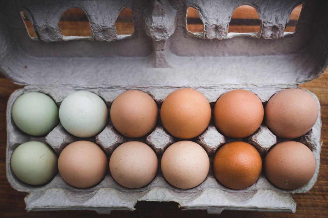 Eier in Packung