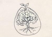 tree egg '94 j&d11