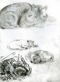 25 Sleepy cats/recklessfruit1/janeadamsart