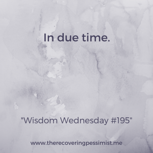 The Recovering Pessimist: Wisdom Wednesday #195 -- I learned that things will happen for me when the time is right. No need to fight it. | www.therecoveringpessimist.me #amwriting #recoveringpessimist #optimisticpessimist #wisdomwednesday