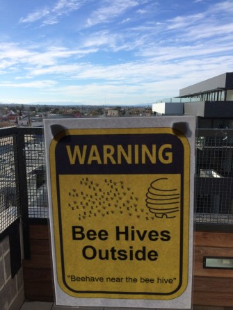 The Commons has 2 beehives to support local biodiversity