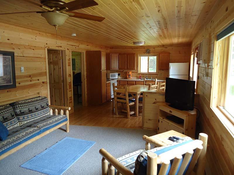 Cabin Interior Living Room