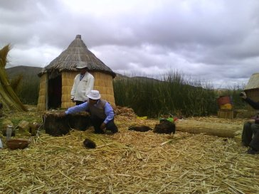 Uro man demonstrating us how the islands are made of totora