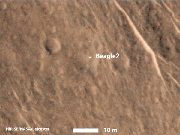 pia19105_mro-beagle-color