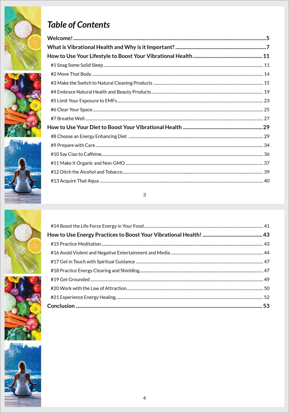 Sneak peak at the Table of Contents of the Vibrational Health Guide