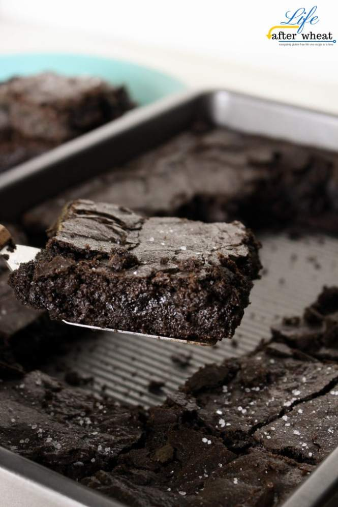 Gluten Free Brownies with Sea Salt