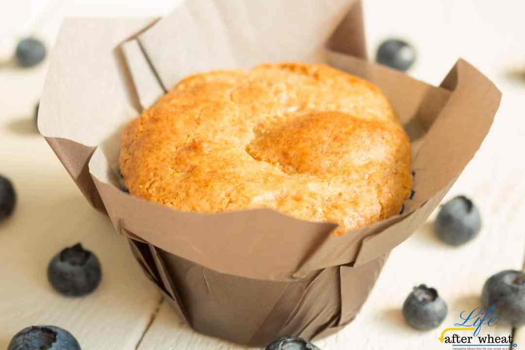 Gluten Free Muffins 5 Ways