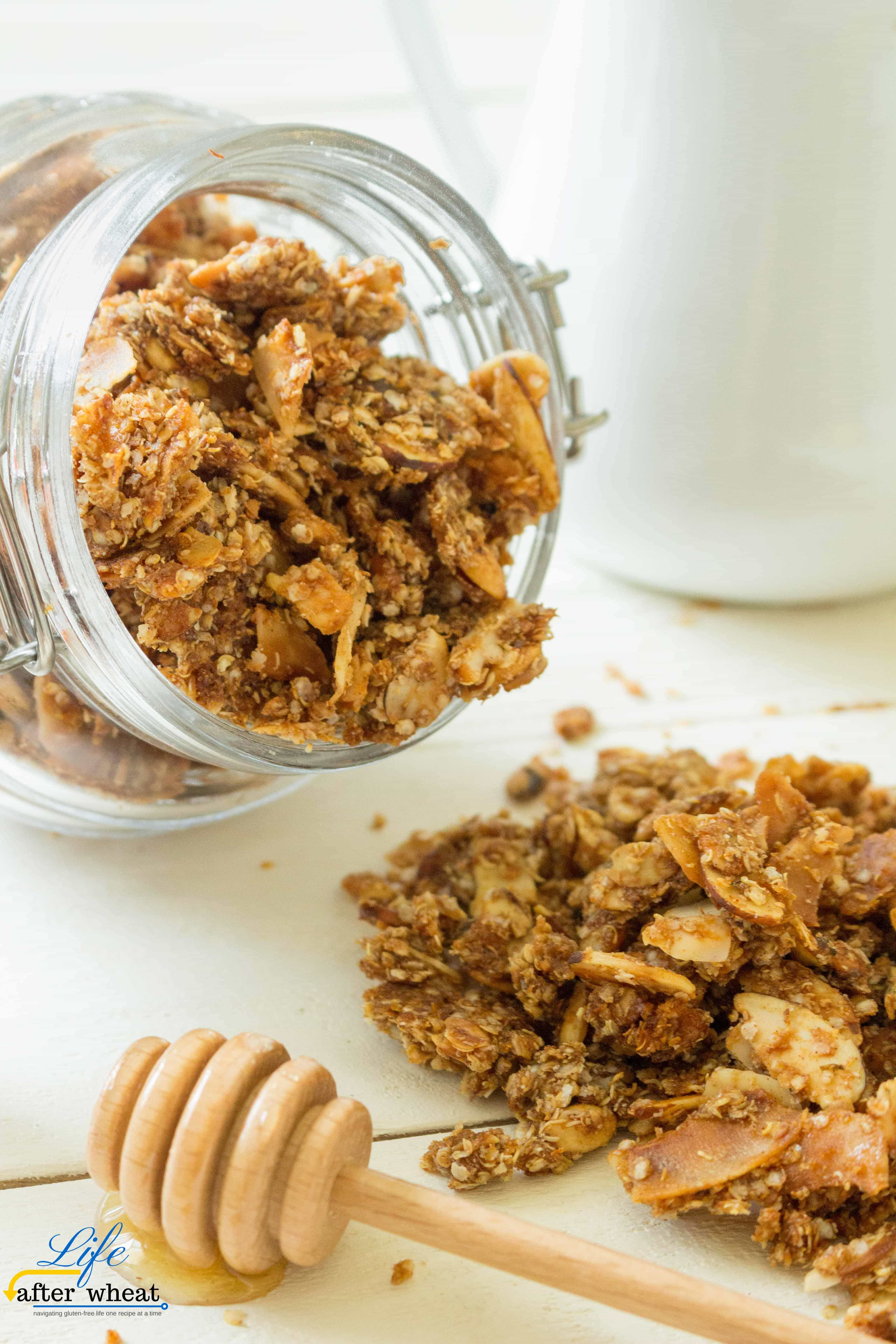 oat free granola life after wheat
