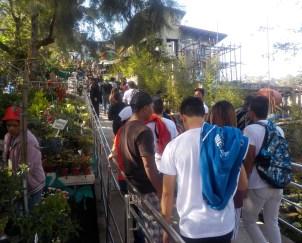 from Twelve Hours in Baguio
