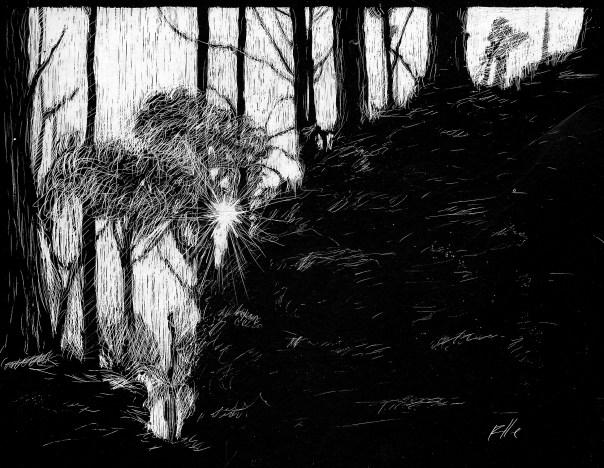 port_scratchboard03_forest