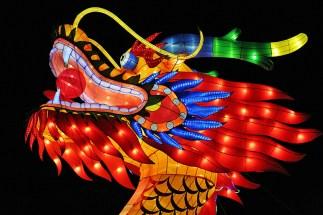 Light-Up Dragon Head