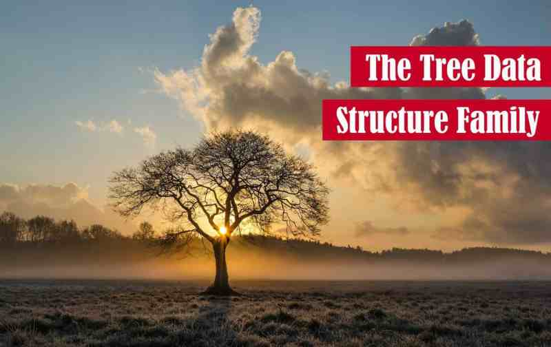 The Tree Data Structure Family Featured Image