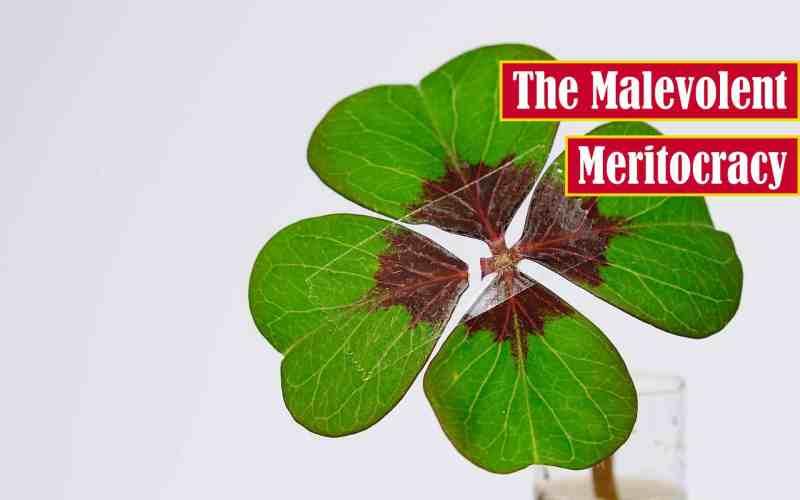 The Malevolent Meritocracy Premium Featured Image