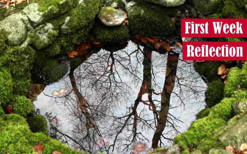 First Week Reflection Featured Image