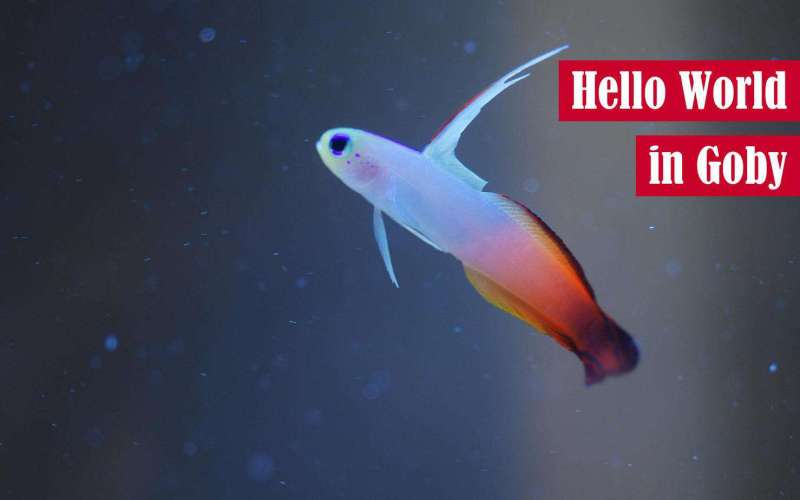 Hello World in Goby Featured Image