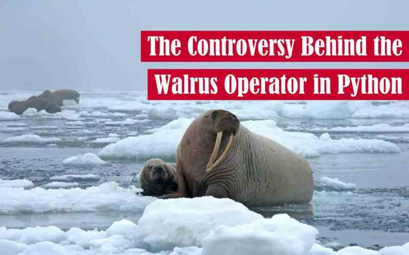 The Controversy Behind the Walrus Operator in Python Featured Image