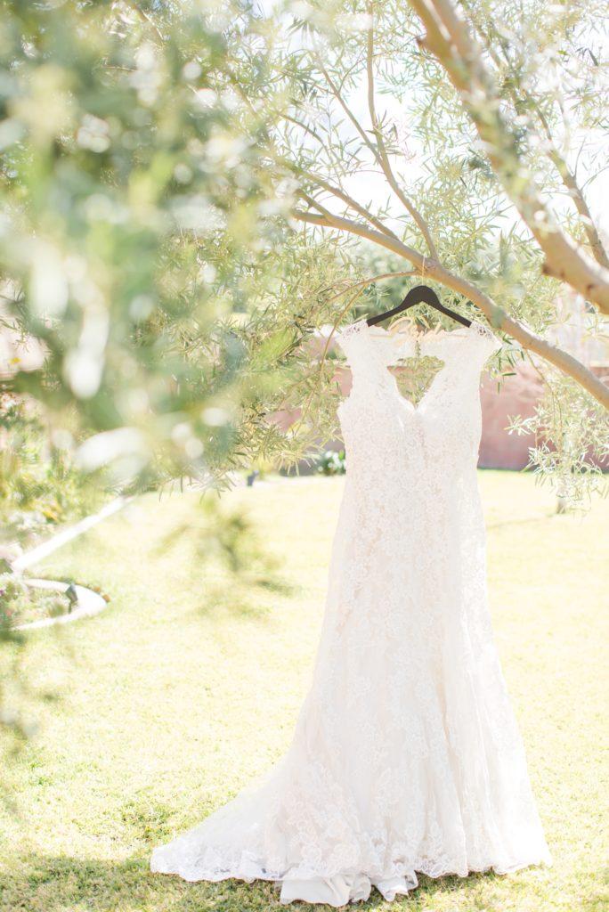 Wedding dress with bride hanger handing in a tree. Colorado Wedding Photographer.
