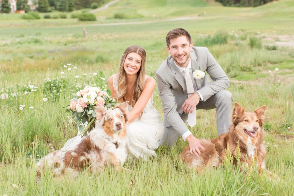 Bride and groom posing with their Australian Shepherd dogs at a Copper Mountain wedding.