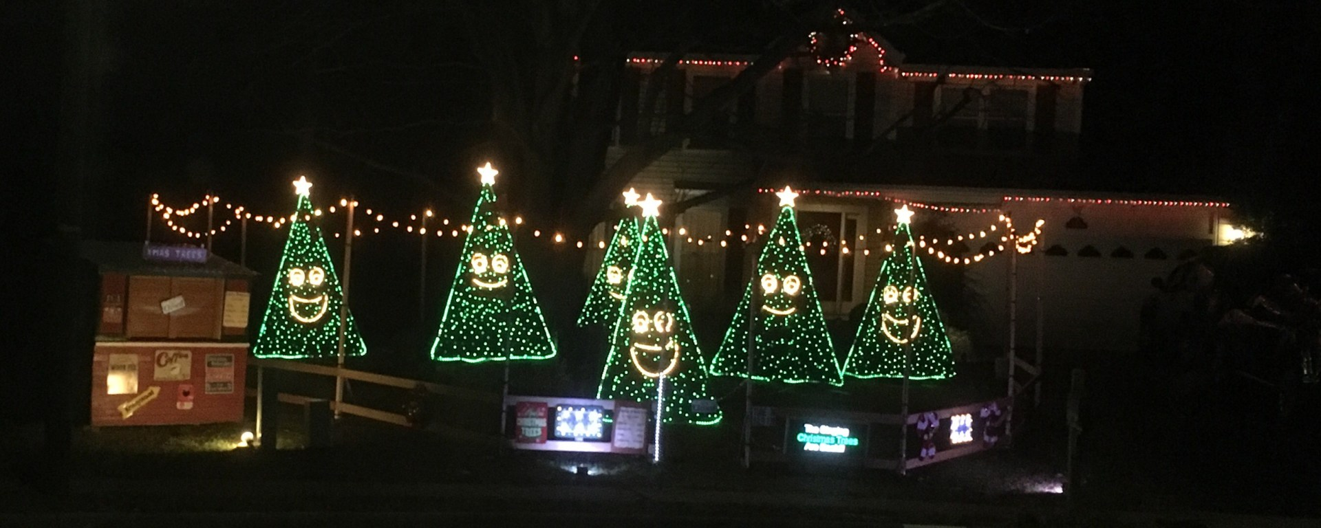 singing christmas trees in manassas city - Singing Christmas Tree Lights
