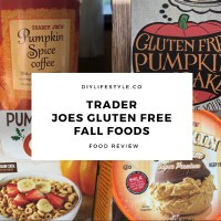 The Best Gluten Free Fall Food at Trader Joes - Food Review