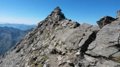 die letzten Meter zum Ankogel-Gipfel