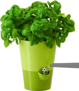 Frieling Smart Planter Review