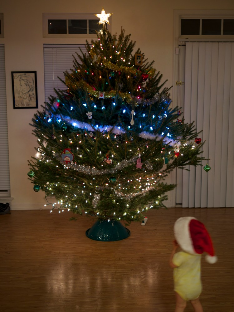 Can you imagine this huge, wide tree on the floor? We made sure to turn a negative event into a positive experience by making saving and redecorating the tree a special experience.