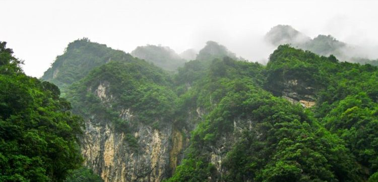 In the movie Born In China, you can see the beautiful terrain that supports incredible animal life.
