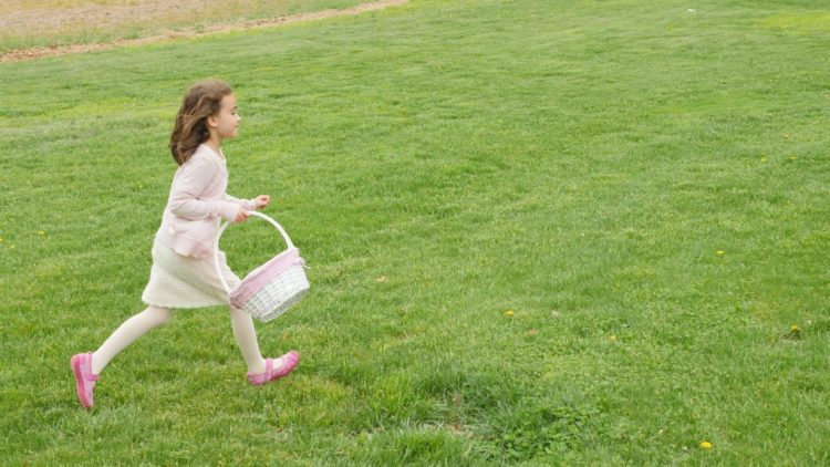 As everyone races to find the eggs, you should follow your children. The grounds are very big, and children can get separated from their parents very easily.