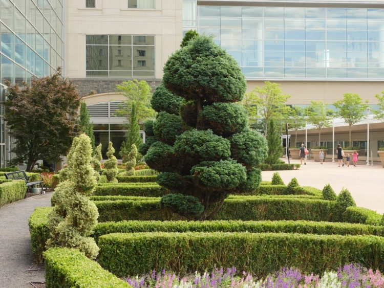Landscaped garden outside the Gaylord National Harbor