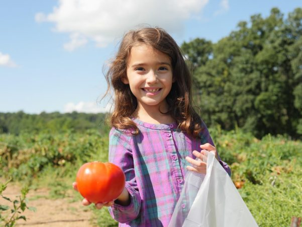 The fall produce at Larriland Farm is ripe and delicious.