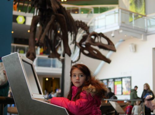 Theresa's Reviews - Ring in the New Year at the Maryland Science Center!