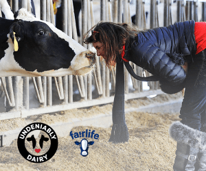 fairlife at Peapod Deal! - Theresa's Reviews