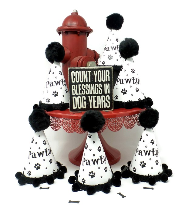 Dog Party Hat, Set of Six, Gotcha Day, Dog Adoption Party, Misfit Manor Shop