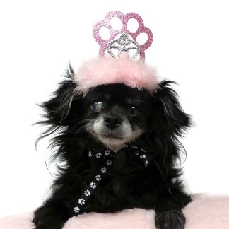 Pink Dog Birthday Crown