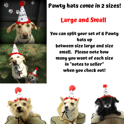 Dog Birthday Hat, Dog Party Hat, Dog Party Favors, Misfit Manor Shop, Gotcha Day, Dog Adoption Party