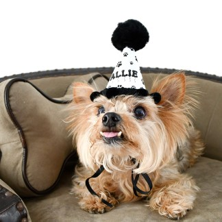 Custom Dog Birthday Hat, Personalized Dog Birthday Hat, Dog Party Favors, Paw Print Party Favors, Misfit Manor Shop
