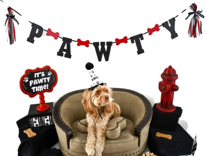 Dog Birthday Party Banner, The Misfit Manor Shop
