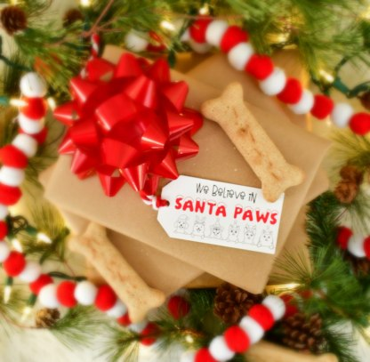 Gift Tags for Pets