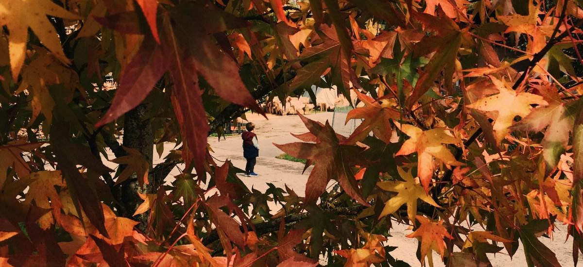 Une chasse au trésor pour l'arrivée de l'automne