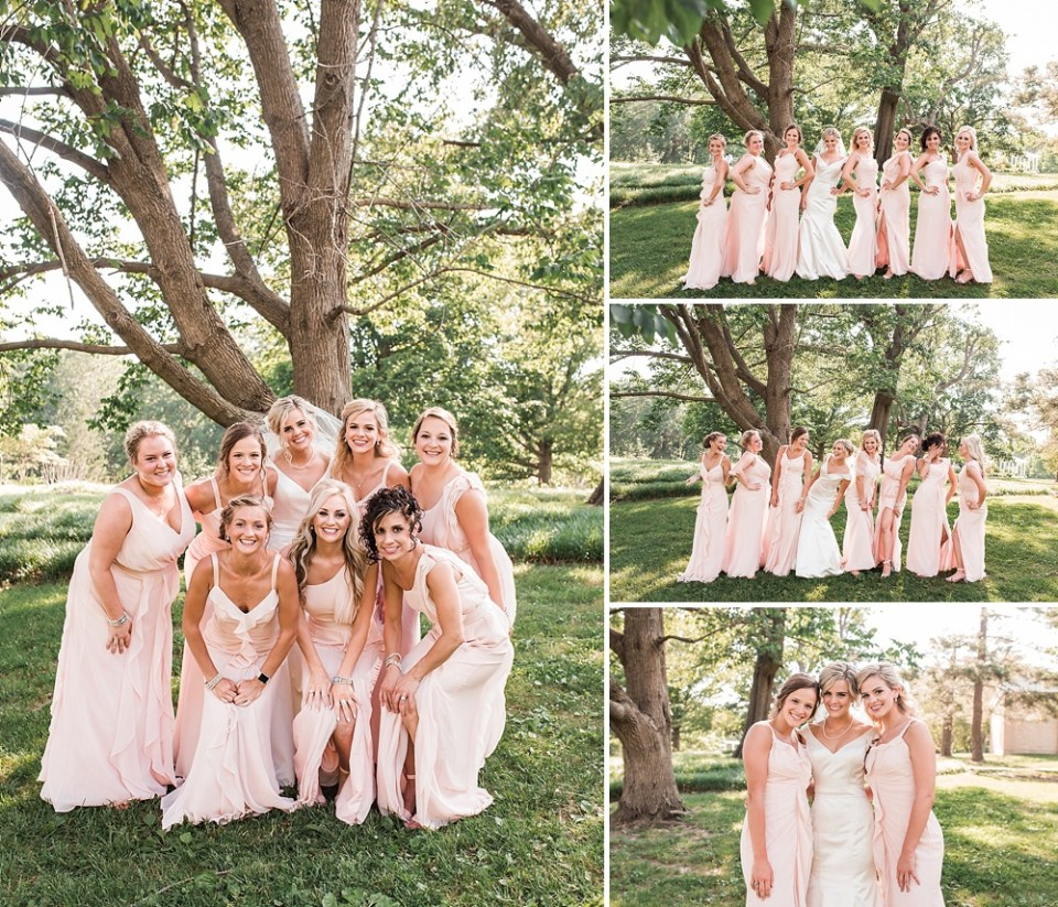 bridesmaids in blush pink gowns