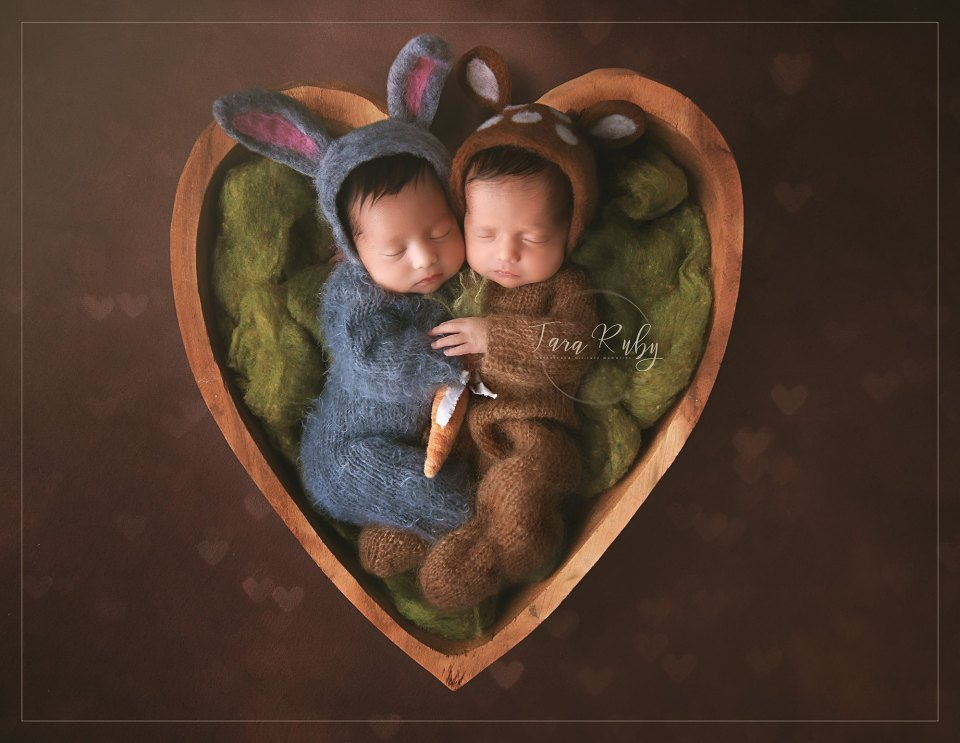 Twin newborns in heart-shaped basket
