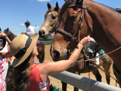 visitors pet horses at Louisville's famed Churchill Downs